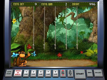 crazy-Monkey-2-bonus-game